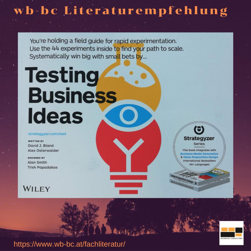 Literaturempfehlung Testing Business Ideas